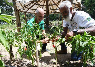 Nova Iguaçu quer ser polo de agricultura orgânica