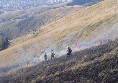 Ações da Guarda Ambiental reduzem incêndios florestais em Nova Iguaçu