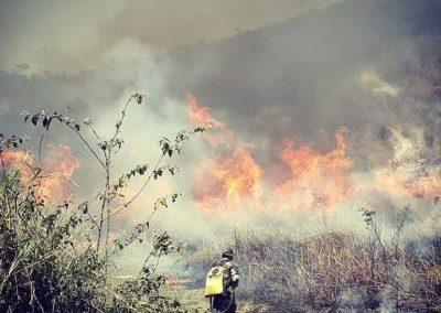 Nova Iguaçu lança campanha educativa para reduzir número de queimadas na mata