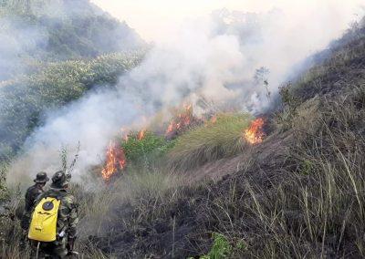 Prefeitura de Nova Iguaçu lança Disque Queimada para população denunciar incêndios florestais