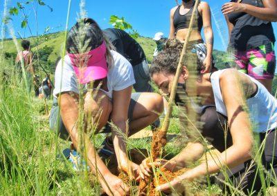 Projeto de reflorestamento vai plantar 300 mil mudas em Nova Iguaçu