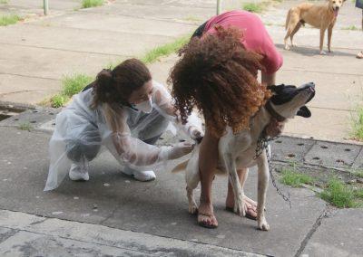 Vacinação Antirrábica continuará até novembro em Nova Iguaçu