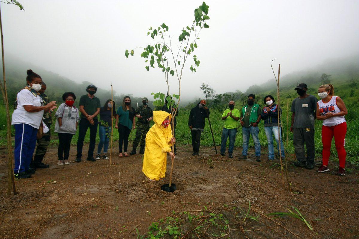 Nova Iguaçu celebra Semana do Meio Ambiente com ações de reflorestamento e de conscientização
